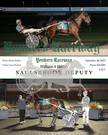 09062019 Race 4- Saulsbrook Deputy