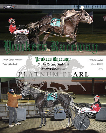 20200211 Race 3- Platnum Pearl