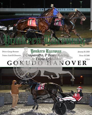 20200120 Race 3-Gokudo Hanover