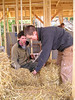 Joelle and Adam sawing a strawbale so it would fit into the wooden frame.