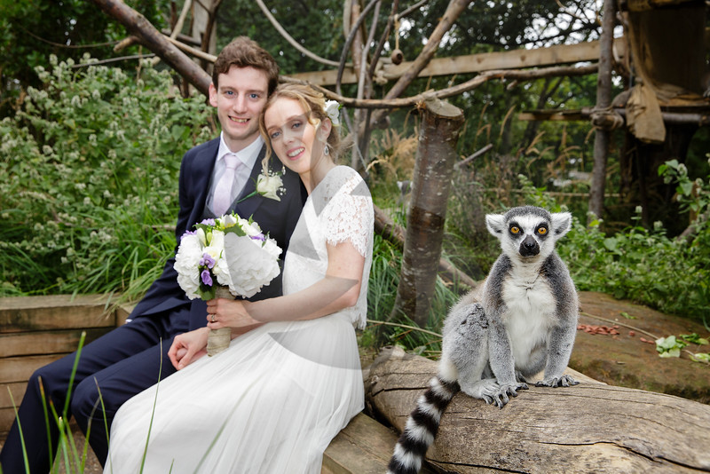 Rachel & Tim - London Zoo
