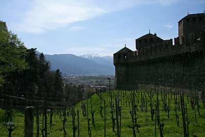 All castles have to have their own vineyards next to them, of course.