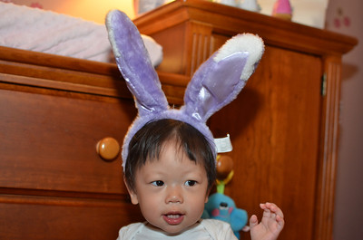 March 13, 2013 - The easter bunny coming