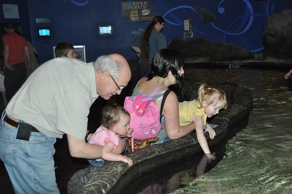 2011, Aquarium