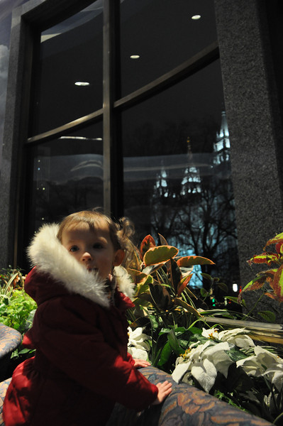 2011, Temple Square Christmas Lights