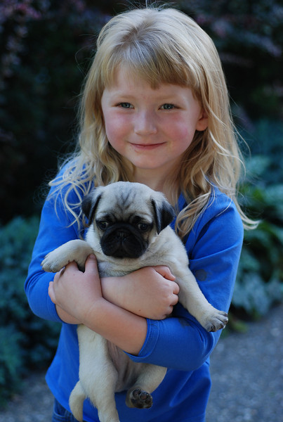 Sarah with pug pups
