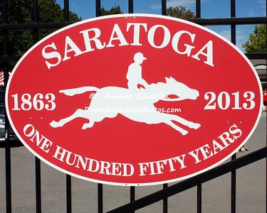 2013 Saratoga
