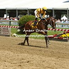 Terra Promessa ( Curlin) with Jose Ortiz up wins the Miss Preakness Stakes for trainer Steve Asmussen and owner Stonestreet stables.