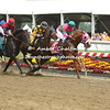 Shamans Ghost catches stablemate Dolphus to win by a neck in the Pimlico Special