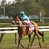Lady  Eli returns to the cheering crowd