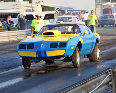 blue yellow firebird 85c