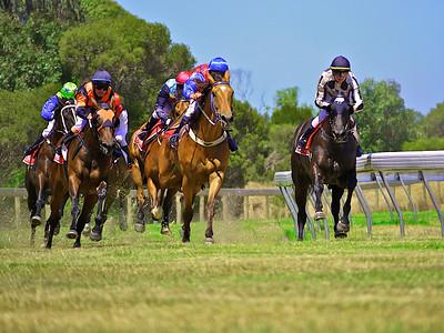 Racing on Kangaroo Island