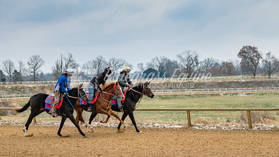 Excercise Rider Jeffery Rowland, Derrick Short and Juan breezing horses for Tommy Short Stables at the Thoroughbred Training Center, 11.28.18, Lexington, Kentucky. Photo by Laura Palazzolo