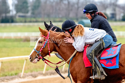 Marissa Short hugging Duct Tape after a good training ride, in company with Alexa Taylor on ?? at the Thoroughbred Training Center, Lexington KY 12.3.18
