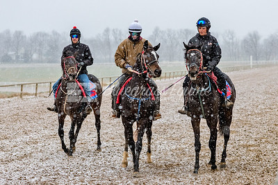 Jeff Rowland, Derrick Short and Alexa Taylor of Tommy Short Racing working horses in the snow 11.27.18 at the Thoroughbred Training Center, Lexington, KY