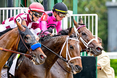 ...and they're off! The start of the 33rd running of the La Troienne (G1) Stakes on Oaks Day at Churchill Downs, 05/04/18. #1 horse - Salty with Tyler Gaffalione up,  #2 Farrell with Channing Hill up and #3 Abel Tasman with Mike Smith up. Salty (Quality Road) and Tyler Gaffalione finish to win their first Grade 1 Stakes. Trained by Gary Barber and owned by Baccari Racing Stable LLC and Chester Prince.    Gary Barber, Baccari Racing Stable LLC and Chester Prince'