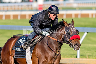 Blended Citizen (Proud Citizen) working at Keeneland with Hall of Famer, Gary Stevens on board 04-21-18