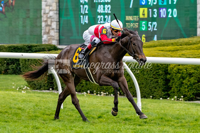 Romantic Moment (Flatter) wins Race 7 at Keeneland, 4/26/18. Jose L. Ortiz up, trained by Claude R. McGaughey and owned by Stuart S. Janney.