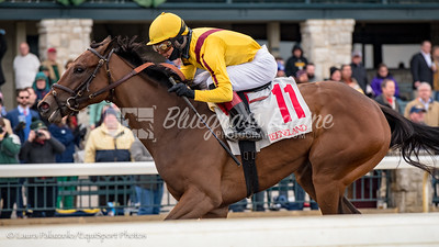 Electric Forest wins the normandy Julep Cup opning eekend at Keeneland