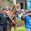 Killag Katie (Candy Ride) in the paddack at Keeneland, 4.7.18 preparing to run in 3rd race of the day —The Normandy (Maiden)
