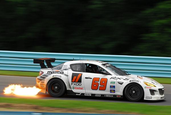Six Hours of Watkins Glen, June 2010