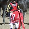 Also ran jockey and horse, Vermilion (JAP)IMG_0227.JPG