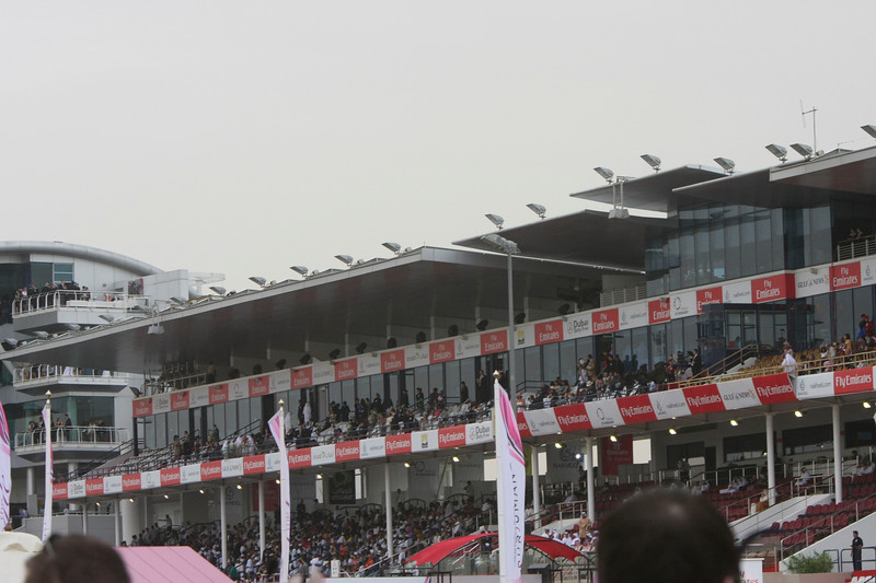 10.  The packed stands