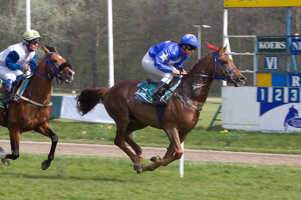 19.  Ahead out of the gate, Prince des Cedres and Jadey Pietrasiewicz