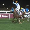 Winner of Qatar International Trophy, Harran (Burning Sand x Aziza D'Aroco)