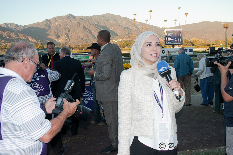 4. UAE media