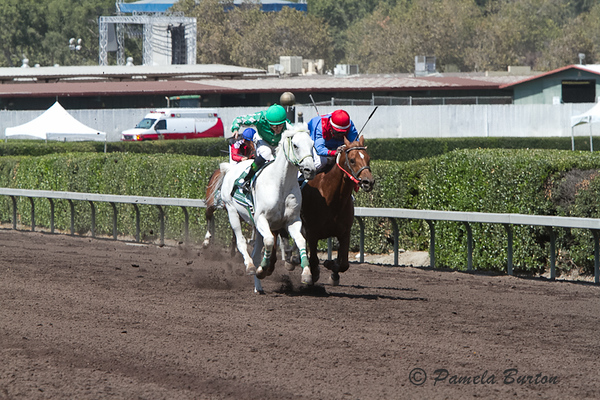 So Big Is Better charging down stretch with Ayers (on rail)