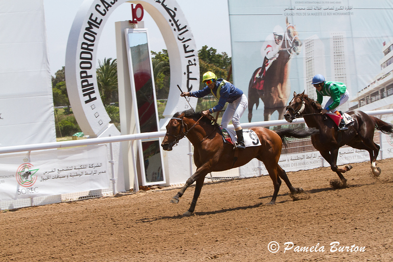 Aman Al Boraq wins 2nd race with Raf II in second
