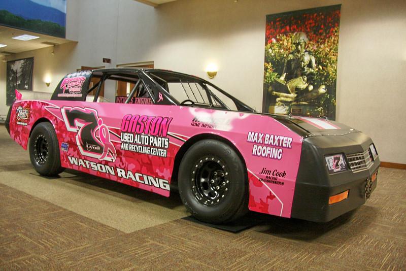 Watson Racing's Pink Lion