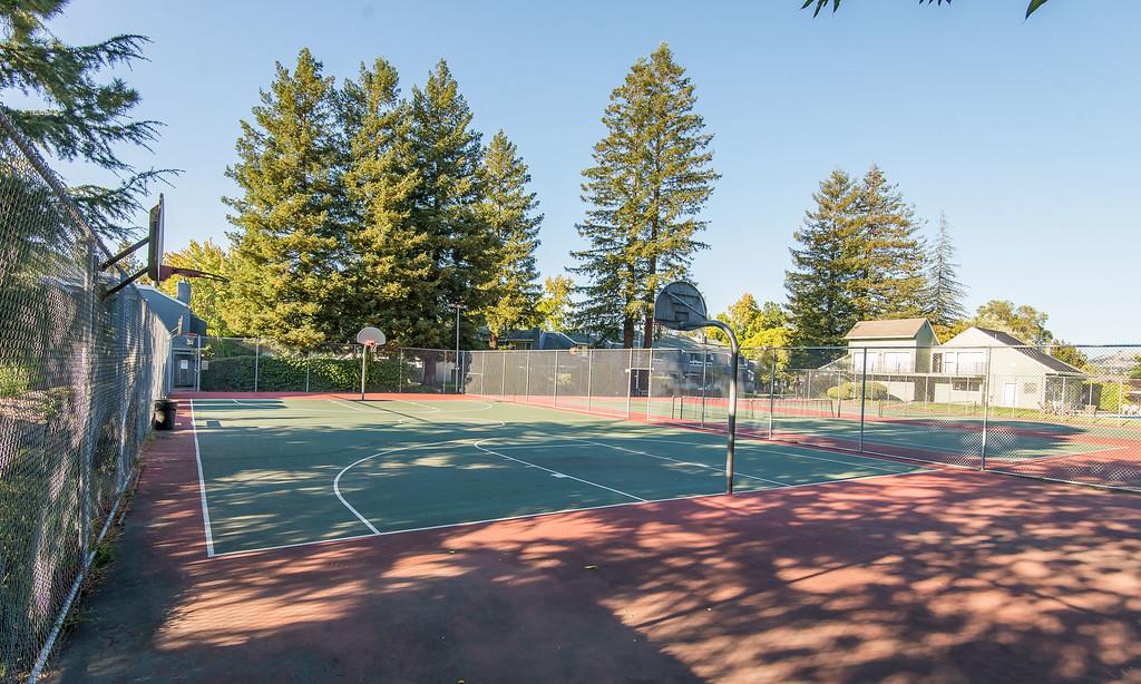 tennis-7087