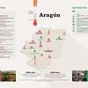 Radiografía Social del medio ambiente en Aragón