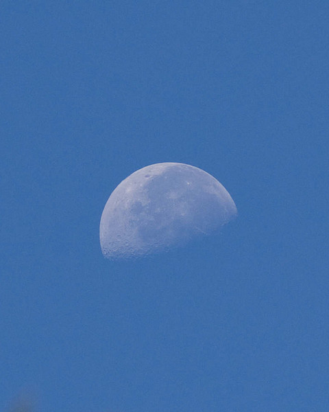 Moon setting in the west against the blue sky of morning
