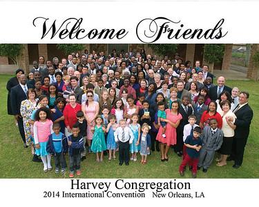 harvey photo