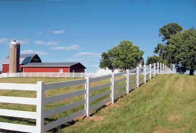 White 4 Rail Fence