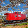 Caboose in Bloom