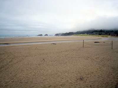 Oregon Coast Scene
