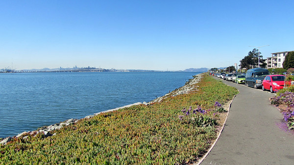 A Walk Along the San Francisco East Bay Trail