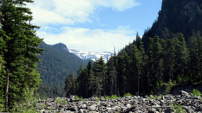 Mt Rainier National Park
