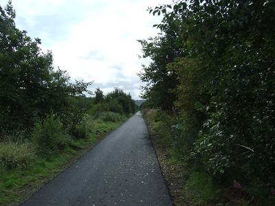 Looking east along the trackbed towards Bridge Of Weir near Route Marker 18 on the cycle track that sits on the trackbed