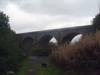 Cartsburn Viaduct taken from Kennedys Street (now a lane), next to the Carts Burn