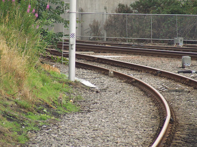 Inverness Station, far North lines, rabbits on the line