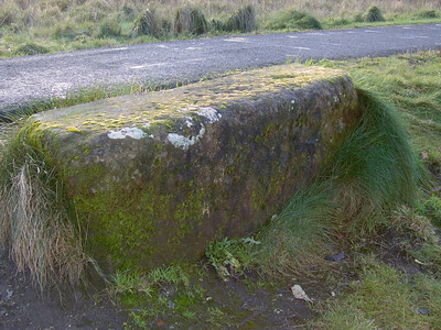Part of the abutment of the bridge that let the Paisly Canal Line cross the Paisley & Barrhead District Railway at Ferguslie Station. The bridge was demolished then the Paisley Canal Line closed and the gap filled in.