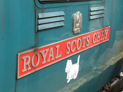 """55022 Royal Scots Grey at Paisley Canal station at the head of the Scottish Railway Preservation Society Routes & Branches railtour. Nameplate for the loco, plus the Royal Scots Grey's Waterloo cap badge above and """"Scotty Dog"""" emblem depicting an Eastfield loco."""