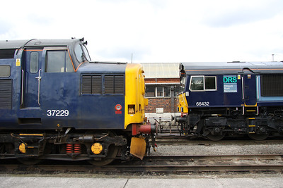 10 July. End profiles of 37229 Jonty Jarvis 8-12-1998 to 18-3-2005 and 66432 at Gresty Bridge.