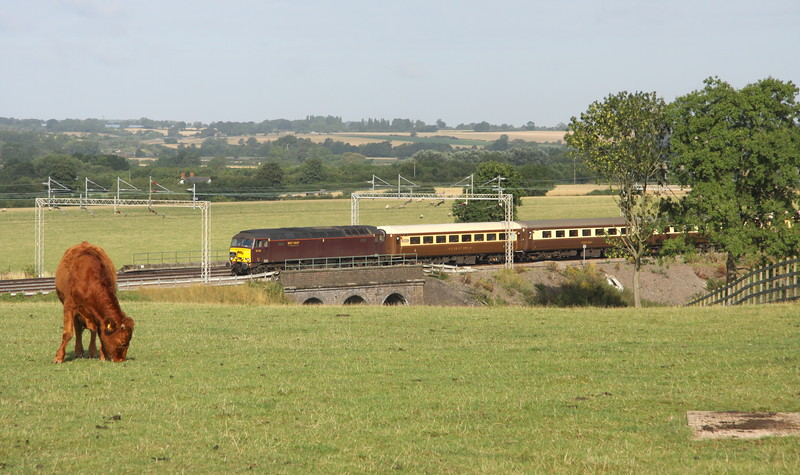 15 August 2015. A less than interested cow continues to munch away as bodysnatcher 57315 heads south at Three Arches, Castlethorpe working the Sussex Coast Statesman, the 1Z07 0533 Crewe - Eastbourne. 57313 was on the rear.