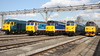 2 September 2017. In numerical order from left to right are 50007 Hercules, 50017 Royal Oak, 50026 Indomitable, a fired up 50044 Exeter and 50049 Defiance.